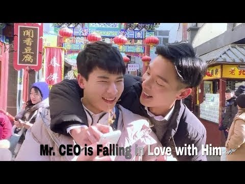 Mr. CEO is Falling in Love with Him - series boys love
